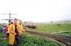 lavoro agricoltura estero